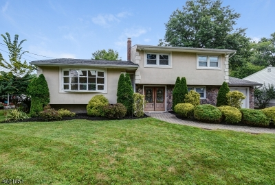 Springfield Twp. Single Family Home For Sale: 287 Milltown Rd