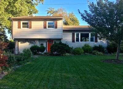 Clark Twp. Single Family Home For Sale: 1793 Dakota St