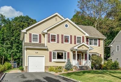 Livingston Twp. Single Family Home For Sale: 223 E Mc Clellan Ave