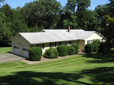Denville Twp. Single Family Home For Sale: 8 Smith Rd