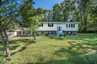 Randolph Twp. Single Family Home For Sale: 41 School House Rd