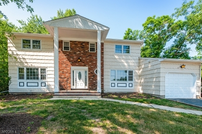 South Brunswick Twp. Single Family Home For Sale: 41 Virginia St