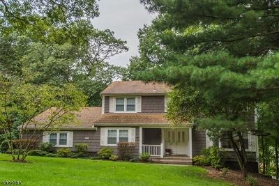 Livingston Twp. Single Family Home For Sale: 44 Tremont Ter