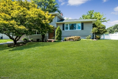Cranford Twp. Single Family Home For Sale: 2 Virginia St