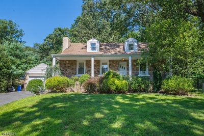 Randolph Twp. Single Family Home For Sale: 126 Dover-Chester Rd