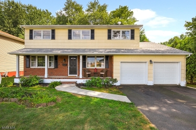 Cranford Twp. Single Family Home For Sale: 910 Orange Ave