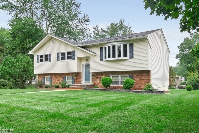 Roxbury Twp. Single Family Home For Sale: 17 Joyce Drive