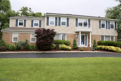 East Hanover Twp. Single Family Home For Sale: 35 Trinity Pl