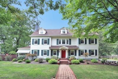 Plainfield City Single Family Home For Sale: 916-24 Cedar Brook Rd