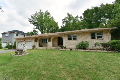 Edison Twp. Single Family Home For Sale: 16 Keen Ln