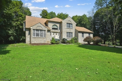 Randolph Twp. Single Family Home For Sale: 23 Carrell Rd