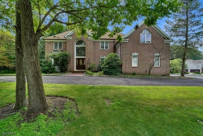 Denville Twp. Single Family Home For Sale: 46 Canterbury Rd