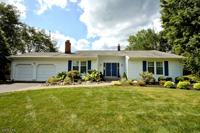 South Brunswick Twp. Single Family Home For Sale: 116 Fairfield Rd