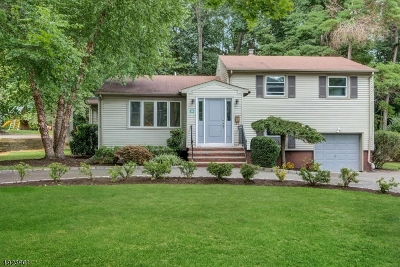 Livingston Twp. Single Family Home For Sale: 14 Mayhew Dr