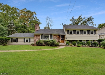 Millburn Twp. Single Family Home For Sale: 263 White Oak Ridge Rd