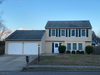Edison Twp. Single Family Home For Sale: 15 Firethorn Dr