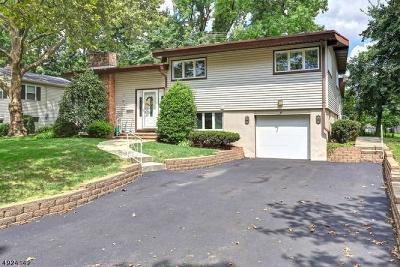 Fanwood Boro Single Family Home For Sale: 103 N Glenwood Rd