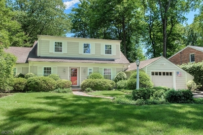 Mountainside Boro Single Family Home For Sale: 1140 Wychwood Rd