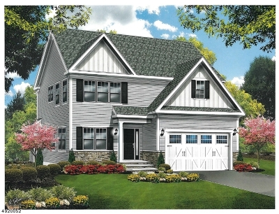 Scotch Plains Twp. Single Family Home For Sale: 323 Parkview Drive
