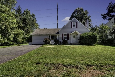 East Hanover Twp. Single Family Home For Sale: 36 Overlook Ave
