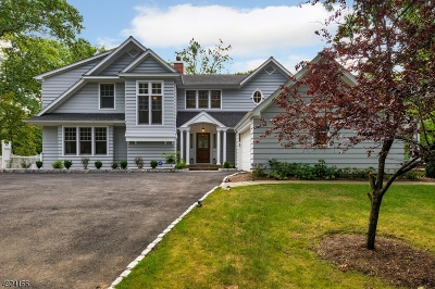 Mountainside Boro Single Family Home For Sale: 312 New Providence Rd