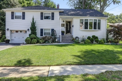 Springfield Twp. Single Family Home For Sale: 37 Garden Oval