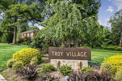 Springfield Twp. Condo/Townhouse For Sale: 66-D Troy Dr