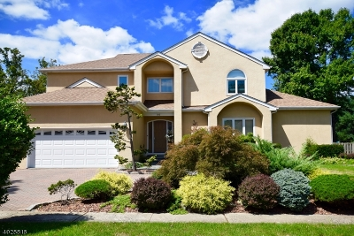 Springfield Twp. Single Family Home For Sale: 96 New Brook Ln
