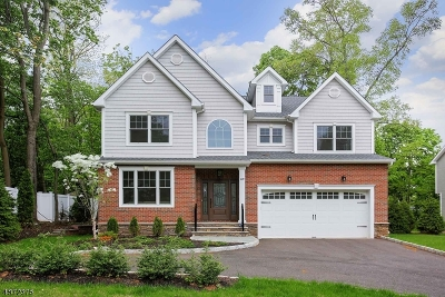 New Providence Boro Single Family Home For Sale: 89 Pearl St