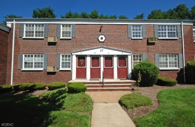 Roselle Park Boro Condo/Townhouse For Sale: 27b W Roselle Ave #B