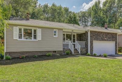Springfield Twp. Single Family Home For Sale: 24 Archbridge Ln