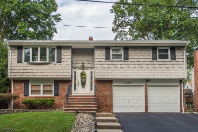 Rahway City Single Family Home For Sale: 1299 Kanski Ct