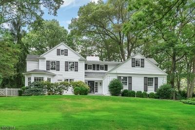 Summit City Single Family Home For Sale: 247 Oak Ridge Ave