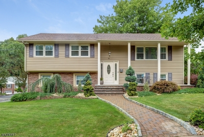 Springfield Twp. Single Family Home For Sale: 10 Littlebrook Rd