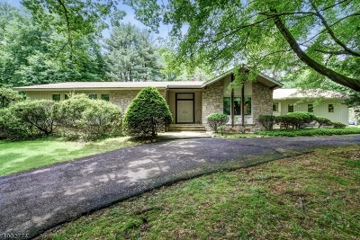 Scotch Plains Twp. Single Family Home For Sale: 1451 Cooper Rd