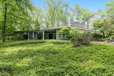 Scotch Plains Twp. Single Family Home For Sale: 1141 Donamy Glen
