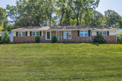 New Providence Boro Single Family Home For Sale: 73 Stoneridge Rd