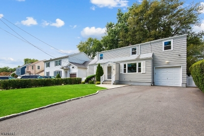 Springfield Twp. Single Family Home For Sale: 76 Linden Ave
