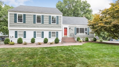 New Providence Boro Single Family Home For Sale: 99 Richland Dr