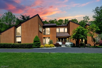 Scotch Plains Twp. Single Family Home For Sale: 12 Ditzel Farm Ct