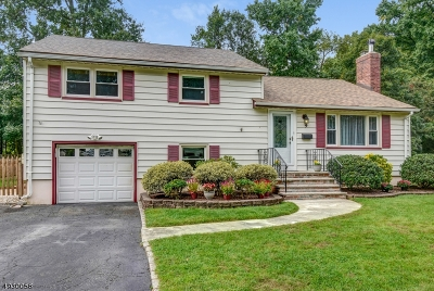 Cranford Twp. Single Family Home For Sale: 9 Sutton Pl