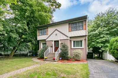 Ridgefield Single Family Home For Sale: 676 Elm Ave