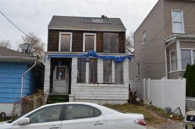 Jersey City Single Family Home For Sale: 290 Cator Ave