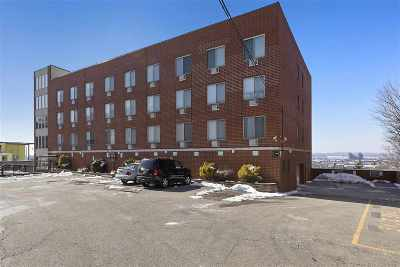 North Bergen Condo/Townhouse For Sale: 1911 Grand Ave #LL5