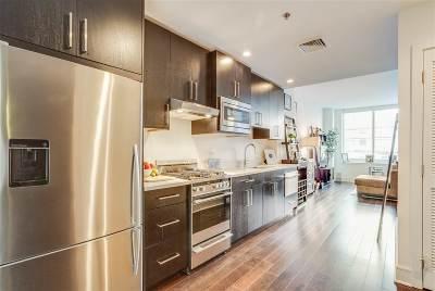 Hoboken Condo/Townhouse For Sale: 1100 Maxwell Lane #219