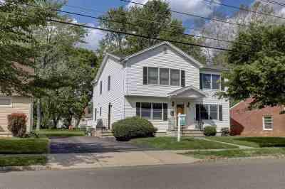 Belleville Single Family Home For Sale: 86 Chestnut St