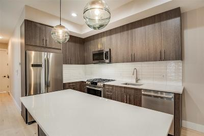 Jersey City Condo/Townhouse For Sale: 289 Webster Ave