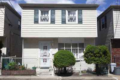 Jersey City Single Family Home For Sale: 113 Western Ave
