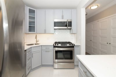 Jersey City Condo/Townhouse For Sale: 45 River Dr South #1910