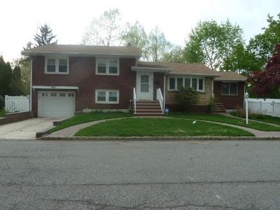 Belleville Single Family Home For Sale: 33 Grove St